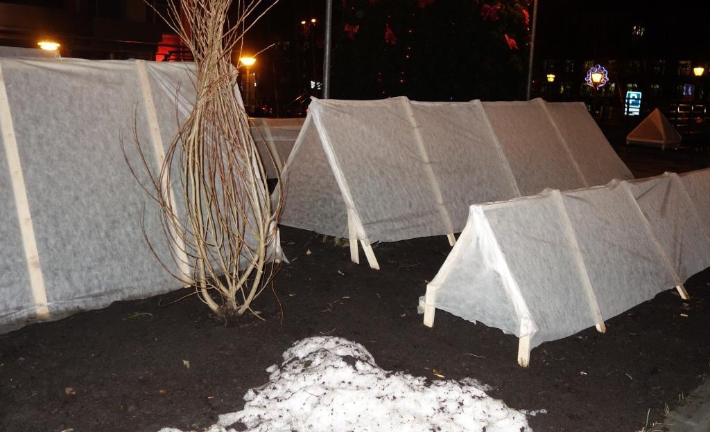 зимовка в домиках